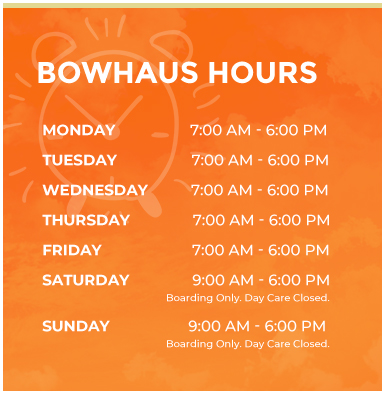 Bowhaus Hours